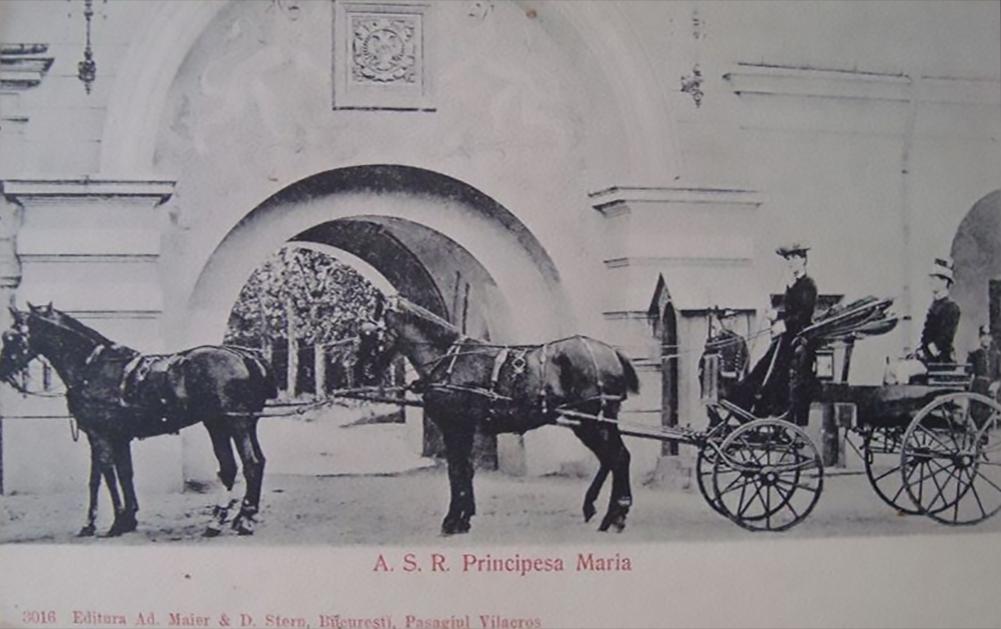 principesa asr maria