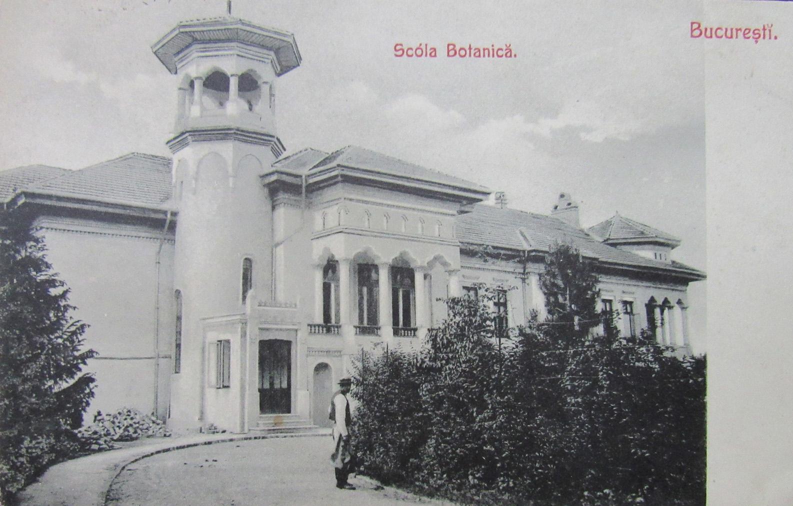 cartierul-cotroceni-1900-gradina-cu-scoala-botanica