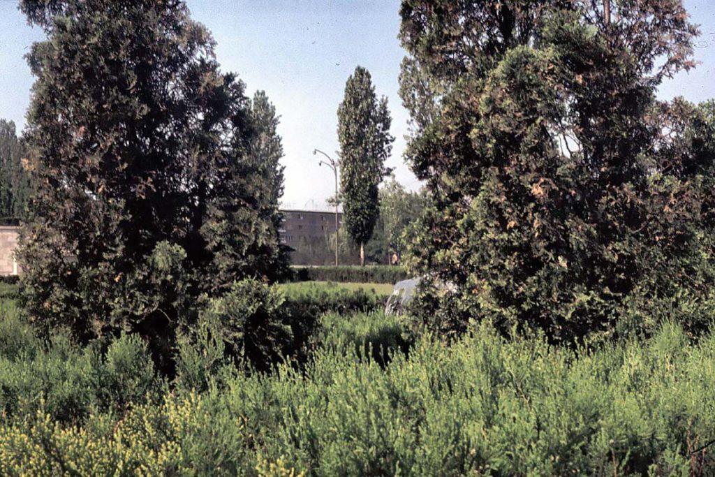 imagini poze fotografii vechi cartierul cotroceni fantana arteziana de pe platoul academiei militare anul 1976 fotograf Mike Lidgley imaginea 3