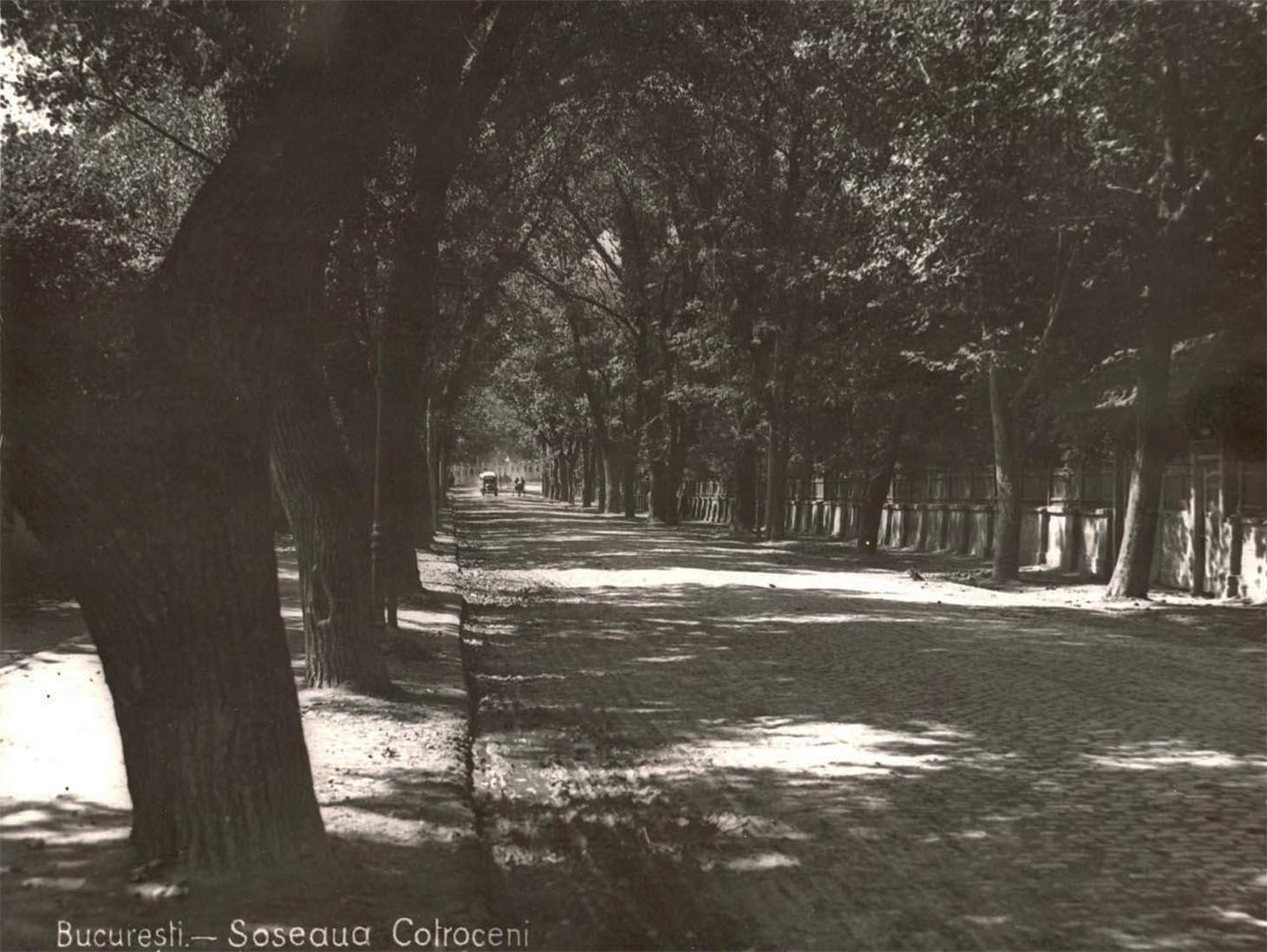 Bucuresti Bucuresci Fotografii imagini poze vechi Şoseaua Cotroceni anul 1922 - fotograf Nicolae Ionescu