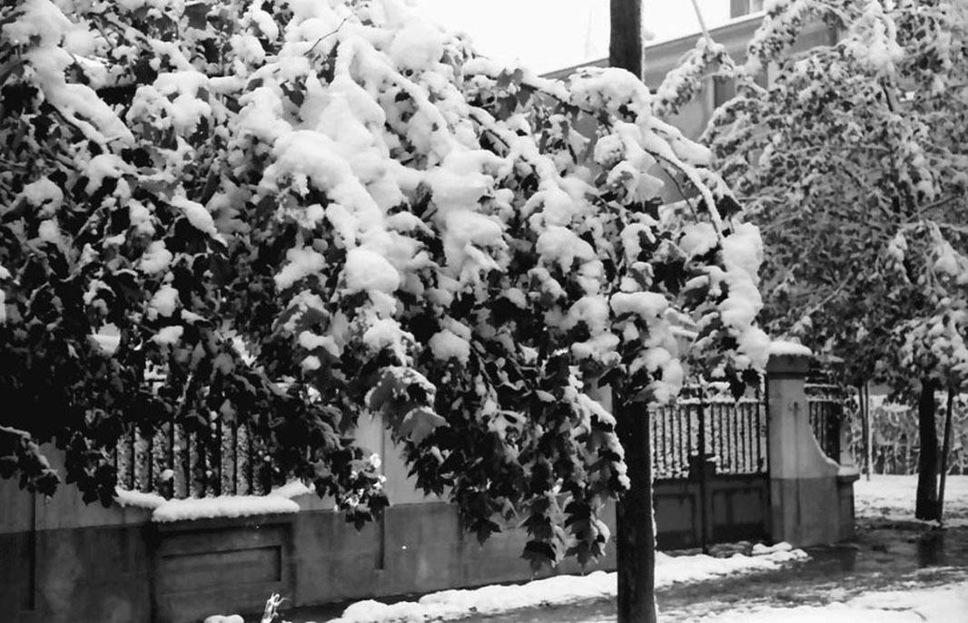 bucurestiul vechi bucurestiul de altadata - iarna anului 1941 in cotroceni - fotograf willy pragher -