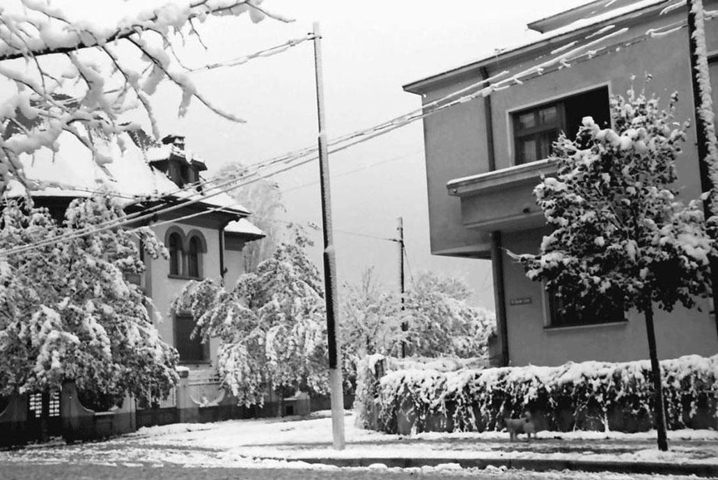 strada doctor lister din cartierul cotroceni in iarna anului 1941 imagini poze cadre vechi fotografii