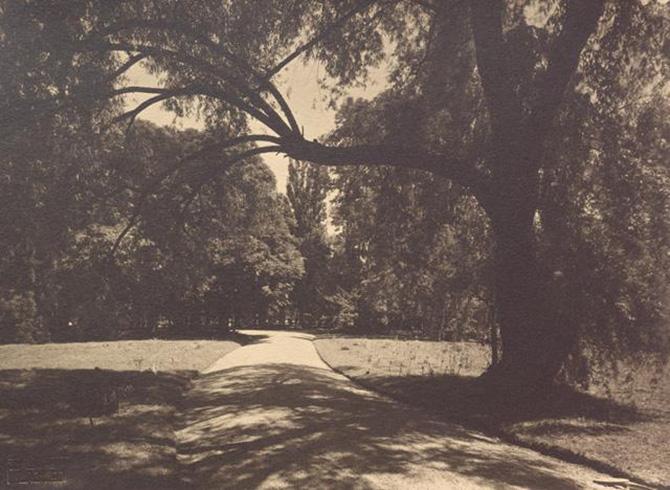 gradina botanica din bucuresti cotroceni anul 1935 - perioada interbelica - fotografie veche 1