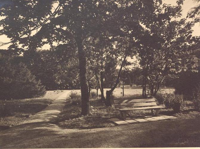 gradina botanica din bucuresti cotroceni anul 1935 - perioada interbelica - fotografie veche 2