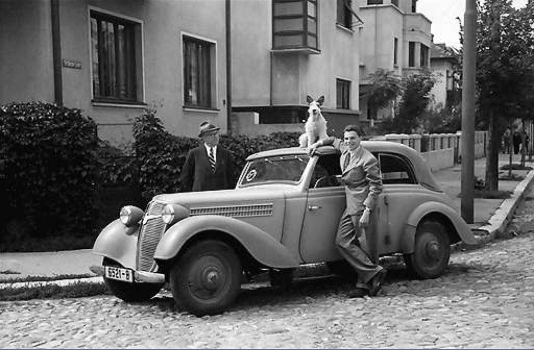 poze imagini cadre fotografii vechi bucuresti interbelic cartier cotroceni anul 1941 fotograf willy pragher strada doctor grecescu cu doctor lister