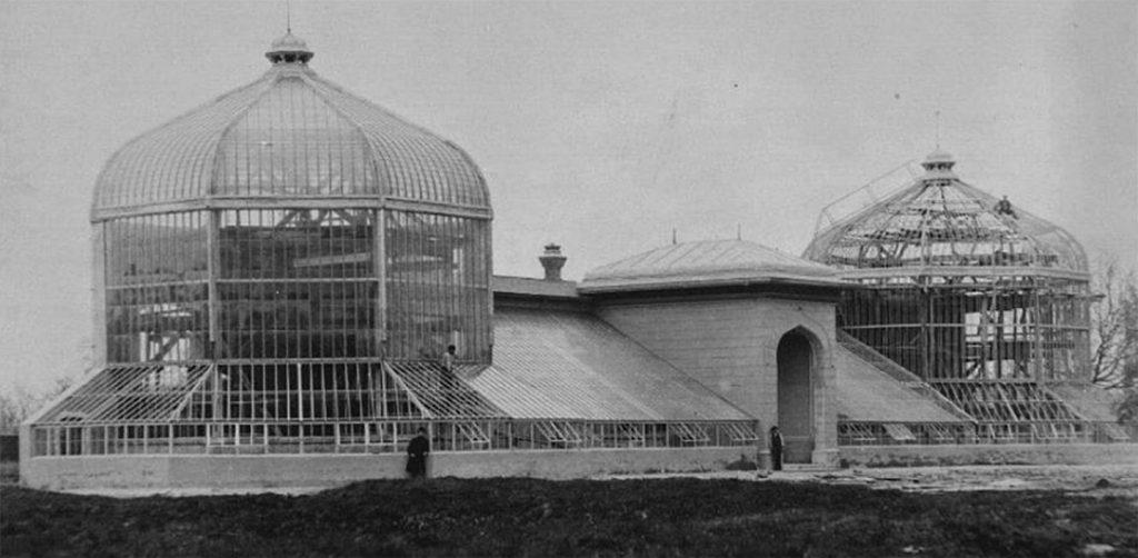 constructia serelor din gradina botanica bucuresti perioada postbelica cartierul cotroceni istorie